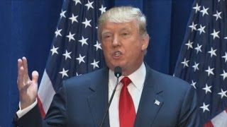 Trump: Country Is Being Decimated by Illegal Immigration