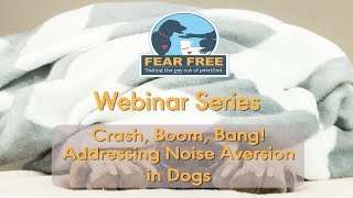 Crash, Boom, Bang! Addressing Noise Aversion in Dogs
