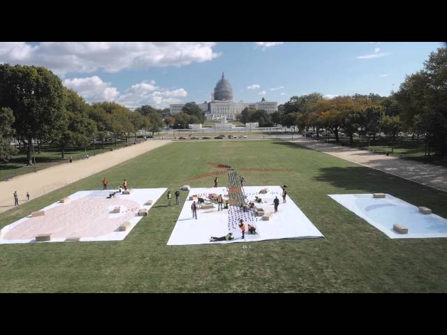 Dozen People Create Model of Wind Turbine With Pinwheels In The National Mall!  - Buy American