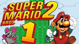 Let's Play Super Mario Bros. 2 Part 1: Yume Kōjō: Doki Doki Panic?