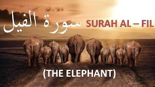 105 || Surah AL FIL || AL FEEL || Alam Tara Kaifa Fala || English | Urdu || Translation | سورة الفيل