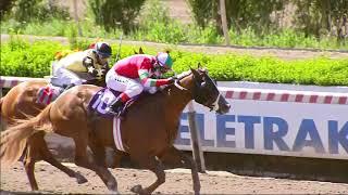 Vidéo de la course PMU PREMIO BARKER BOY