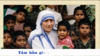 Dọn Đường Chúa Đến (CN3 Mùa Vọng) - Hàn Thư Sinh