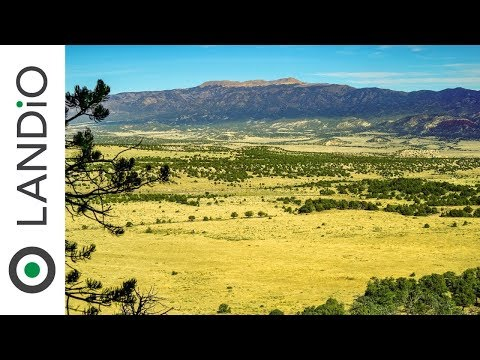SOLD : Land For Sale in Colorado : 35 Acre Wooded Homesite with Mountain Views bordering Public Land