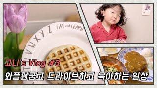 육아요리일상브이로그 /와플팬/가창찐빵/망향비빔국수/꽃시…