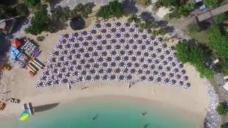 沖縄のリゾートホテル「ルネッサンス リゾート オキナワ」は、イルカプ...