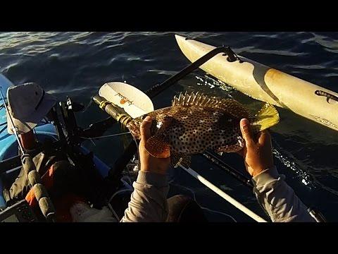 Florida Keys Kayak Fishing - An Evening On The Reef (How to Keys Reef Fishing)