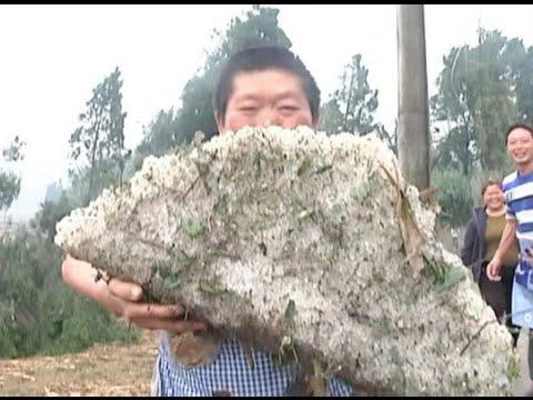 Walnut size hails hit Guizhou province on Friday