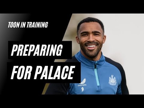 TOON IN TRAINING   Preparing for Palace