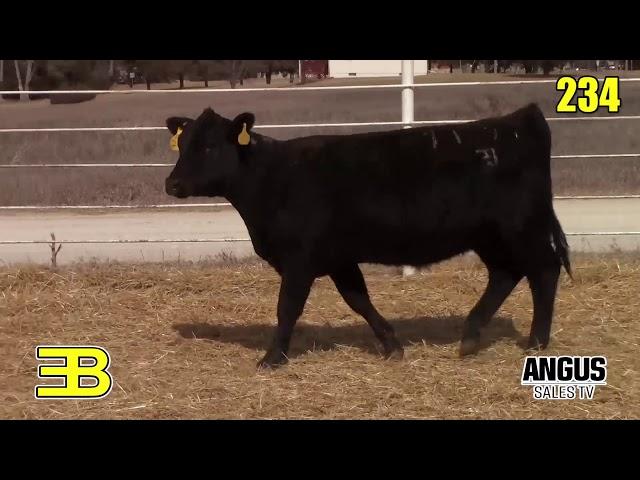 Benoit Angus Lots 234 - 235
