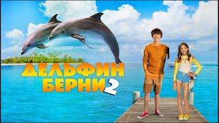 Дельфин Берни 2 2019 года комедия семейный