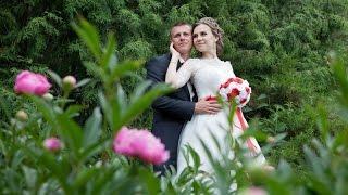 Заказать свадьбу - 8-904-544-54-31, ведущий отзывы,  Отзывы о свадьбе(, 2016-06-22T09:56:34.000Z)