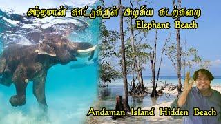 Swimming With Elephant - Andaman Hidden Beautiful Beach Heavlock Island (Elephant Beach)