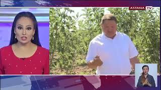 Решить проблему субсидирования садоводов пообещали депутаты Мажилиса
