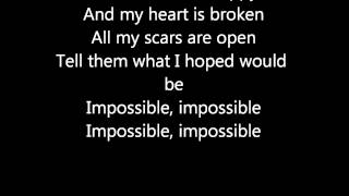 Ricardo Bielecki-Impossible Lyrics!
