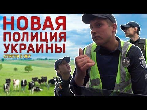 Новая Полиция. Баранов