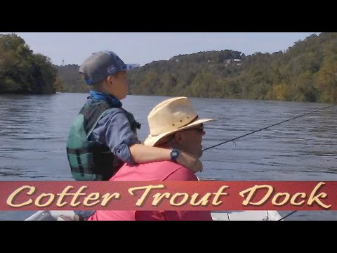 Arkansas Whyite River Trout Fishing Report October 9, 2019