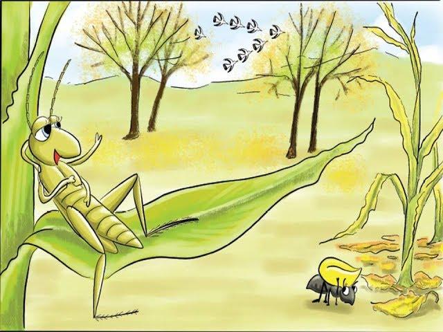 درس الجندب والنملة الصف الرابع الاساسي حسب المنهاج الجديد بصوت الطالبة رحيق صعابنة
