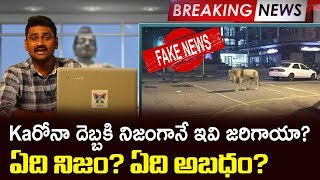 Real Vs False News On C-19 Effect | Myra Media Special Story On Real Vs False News Spread