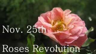 #rosrev - Roses Revolution - Stopp Obstetric Violence!