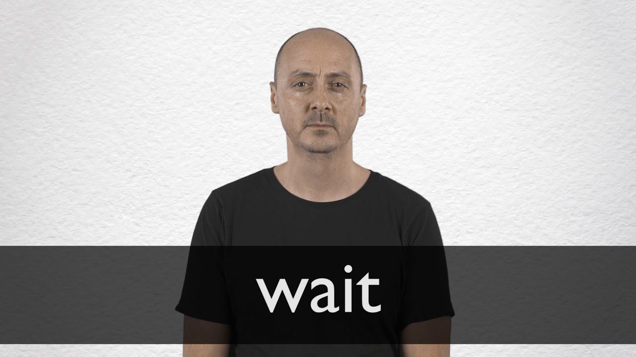 "Hindi Translation of ""wait"" | Collins English-Hindi Dictionary"