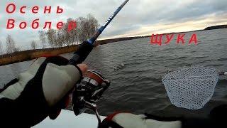 Рибалка в кінці листопада - ловимо щук