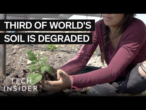How These Volunteers Are Fighting Soil Erosion
