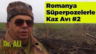 Romanya Süperpozelerle Kaz Avı 2 Doktor Ali Postası Yaban Tv - romania goose hunting