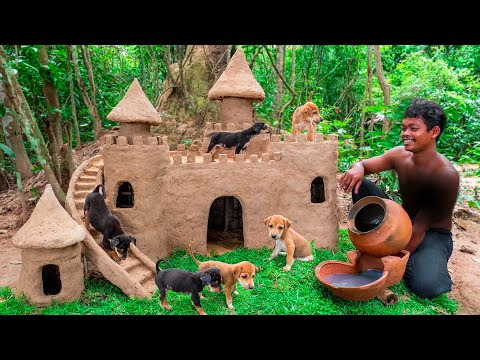 Collect Abandoned Puppy and Build Castle Mud Dog House on Unused Ant Hill