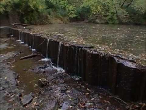 TN Wild Side-Low Head Dams