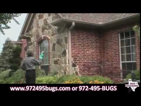 pest-management-of-texas-pest-and-termite-control---company-overview