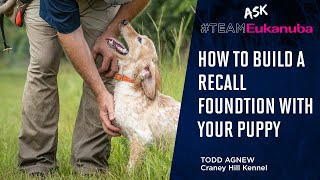How To Build a Recall Foundation With Your Puppy