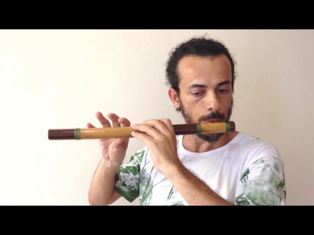 Flauta Transversal - Estilo Zen 5 furos F