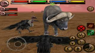 Vulture Simulator, Elder Tiger and Elder Gorilla Boss Fight, Ultimate Savanna Simulator
