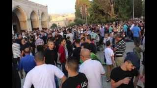 Gambar cover 'Eid in Palestine Al Aqsa 1435 (2014)
