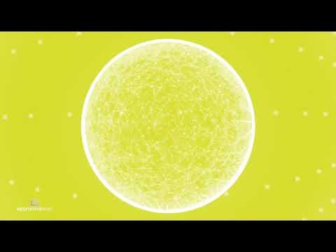 528 Hz ❯ Meditation Music ❯ Miracle Tone ❯ Marimba Meditation Music ❯ Awaken the Fire Energy Within