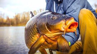 Русская Рыбалка 4 Дневник Рыболова Трофеи за Март 2021