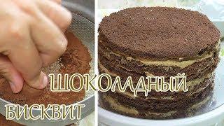 рецепт бисквита | шоколадный бисквит | видеорецепт