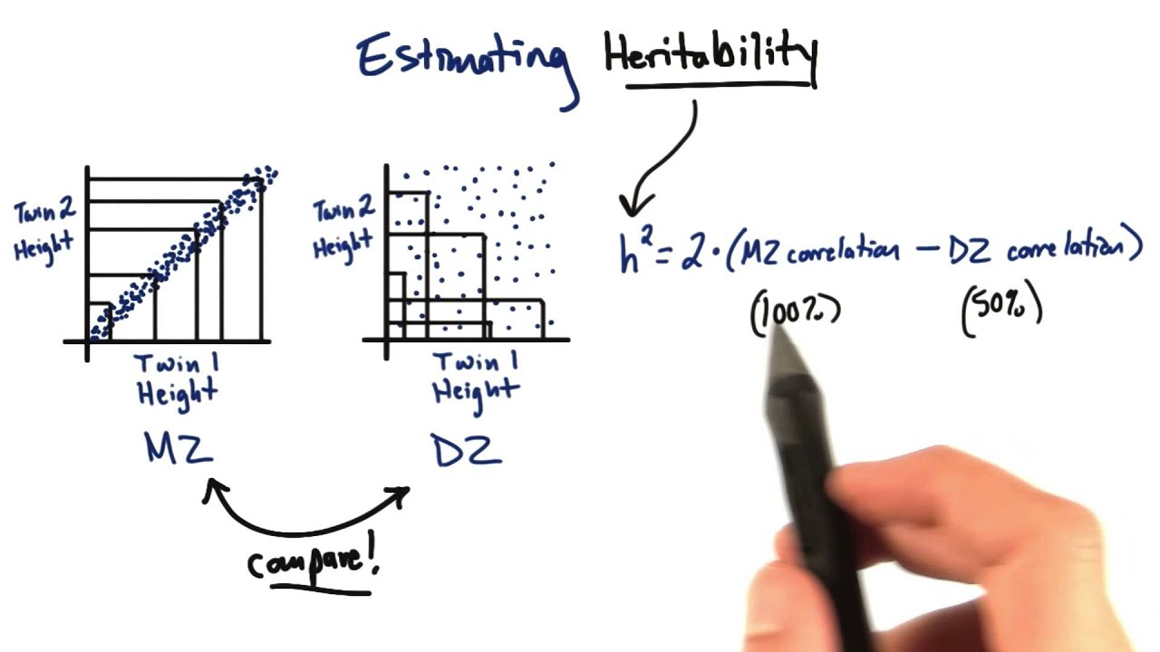 Heritability calculation tales from the genome youtube heritability calculation tales from the genome ccuart Image collections