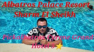 ОТДЫХ В ЕГИПТЕ ШАРМ ЭЛЬ ШЕЙХ Albatros Palace Resort Sharm El Sheikh Pickalbatros Cyrene Grand Hotel