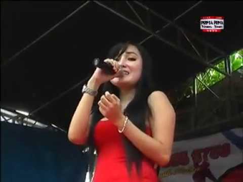 Juragan Empang SAGA live temurejo karangrayung