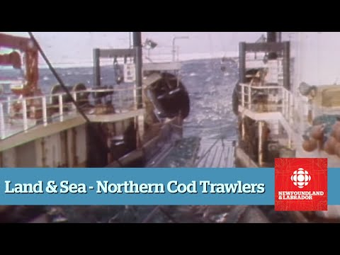 Land & Sea - Northern Cod - Full Episode