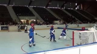 15 et 16 Avril 2017 Weekend PARTAGE autour du Roller-hockey en Isère du club des Yeti's Grenoble