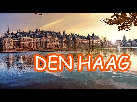 Den Haag Seyahati - Hollanda 🌍 - The Hague | Lahey