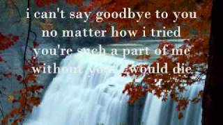 Watch Helen Reddy I Cant Say Goodbye To You video
