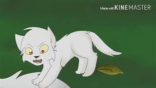 Коты воители буран клип-так устроин этот мир(чит. описание)