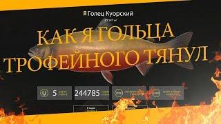 Русская Рыбалка 4 - Как я Гольца куорского трофейного тянул (Советую посмотреть)