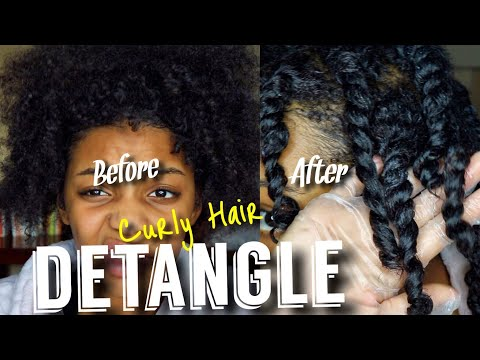 How to DETANGLE CURLY HAIR | Moisturizing Dry Hair | Flawhs
