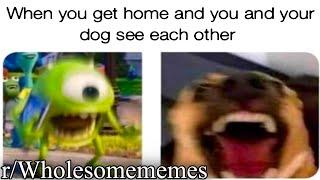r-wholesomememes-good-memes-for-good-bois
