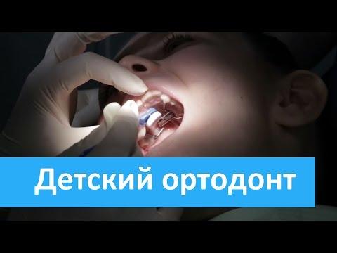 Ортодонт - vse-